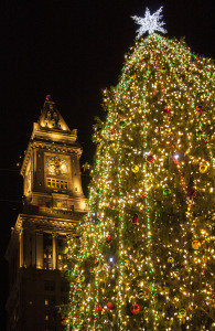 boston christmas tree lQZr