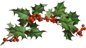 christmas holly clip art iTEH