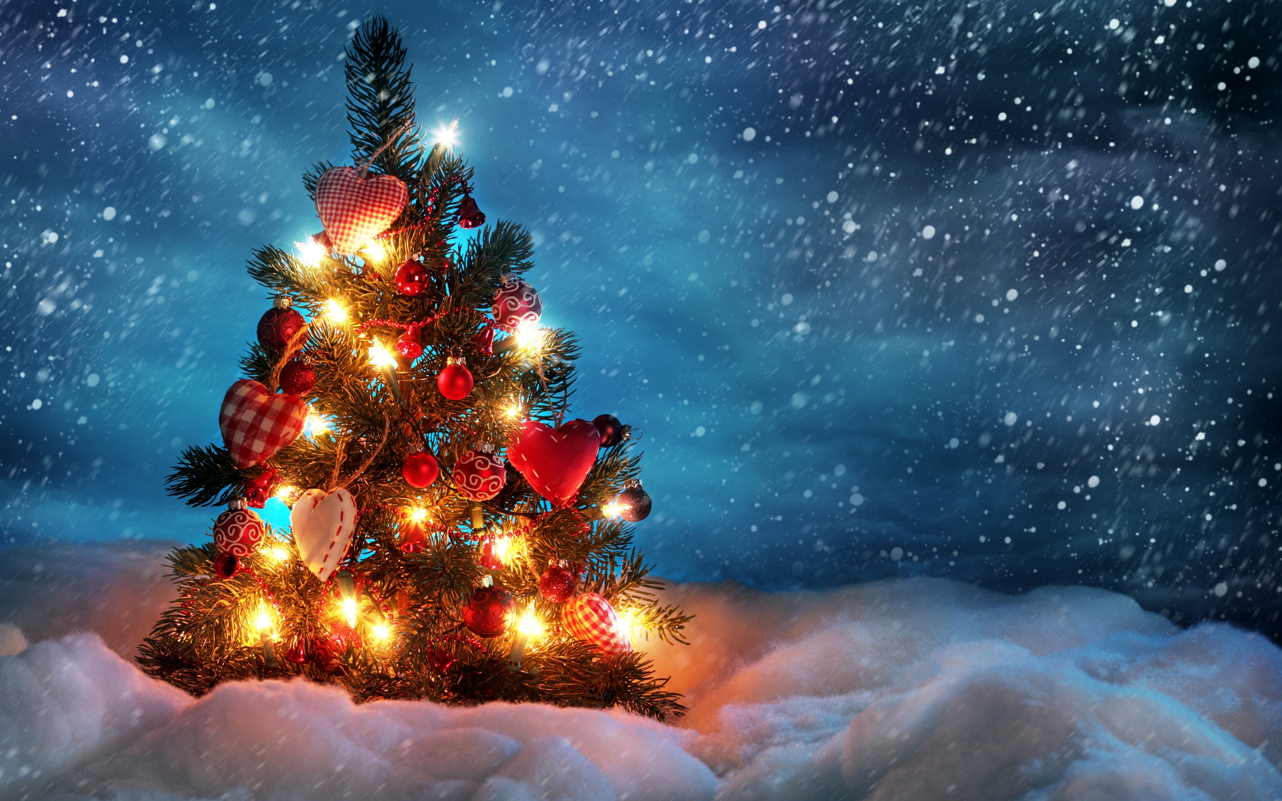 Christmas Light Pictures Pictures Wallpapers
