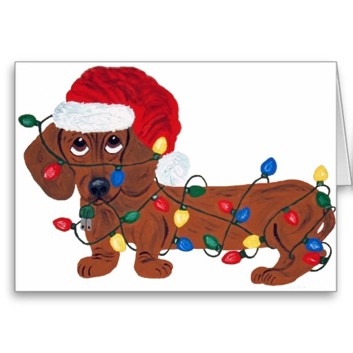 Dachshund Christmas Pictures Wallpapers