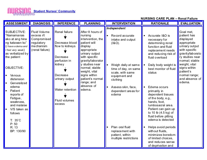 asthma care plan template - definition of nanda nursing diagnosis