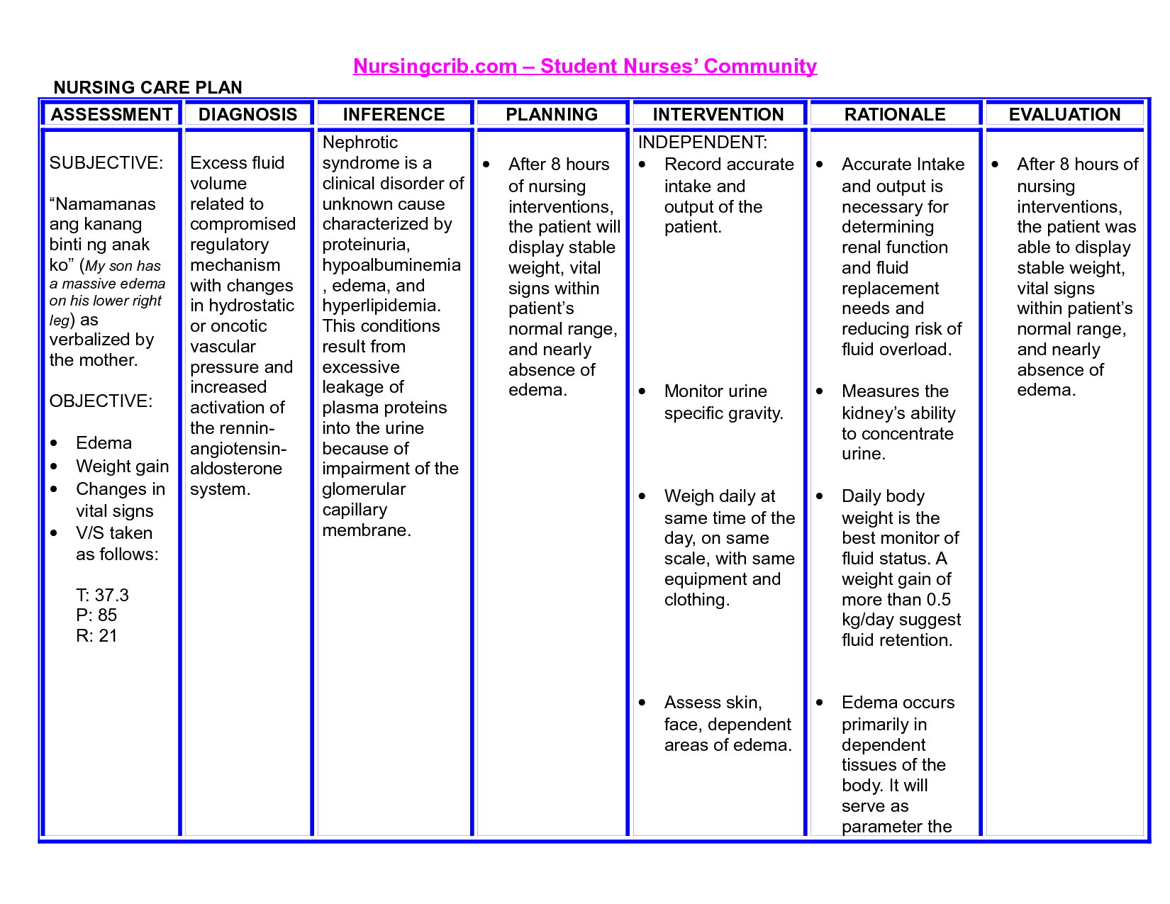 Nursing diagnosis template for Nursing care plan format template