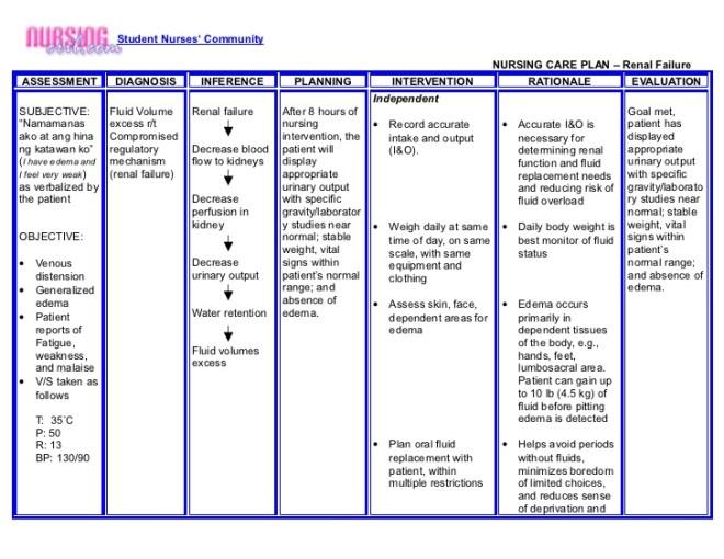 nanda nursing diagnosis list 2015 pdf