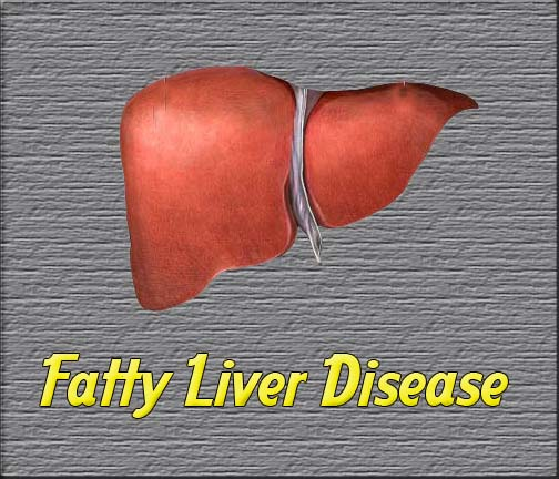 Alcohol And Fatty Liver Syndrome Alcohol Mastery Pictures Wallpapers