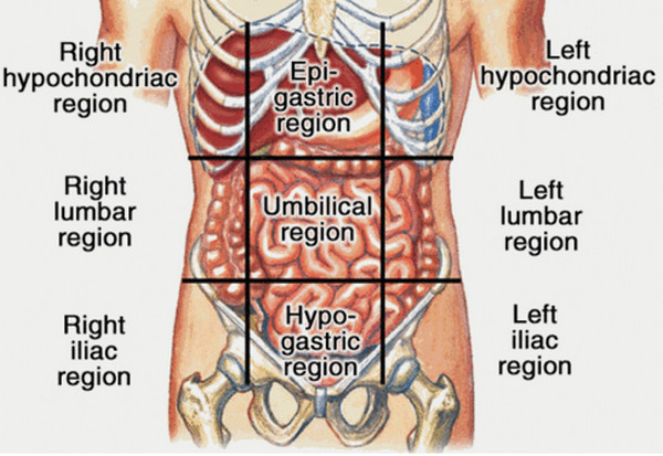 Enlarged Liver Symptoms Liver Pain Pictures Wallpapers
