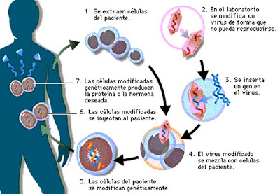 Quimioterapia Cancer De Mama Pictures Wallpapers
