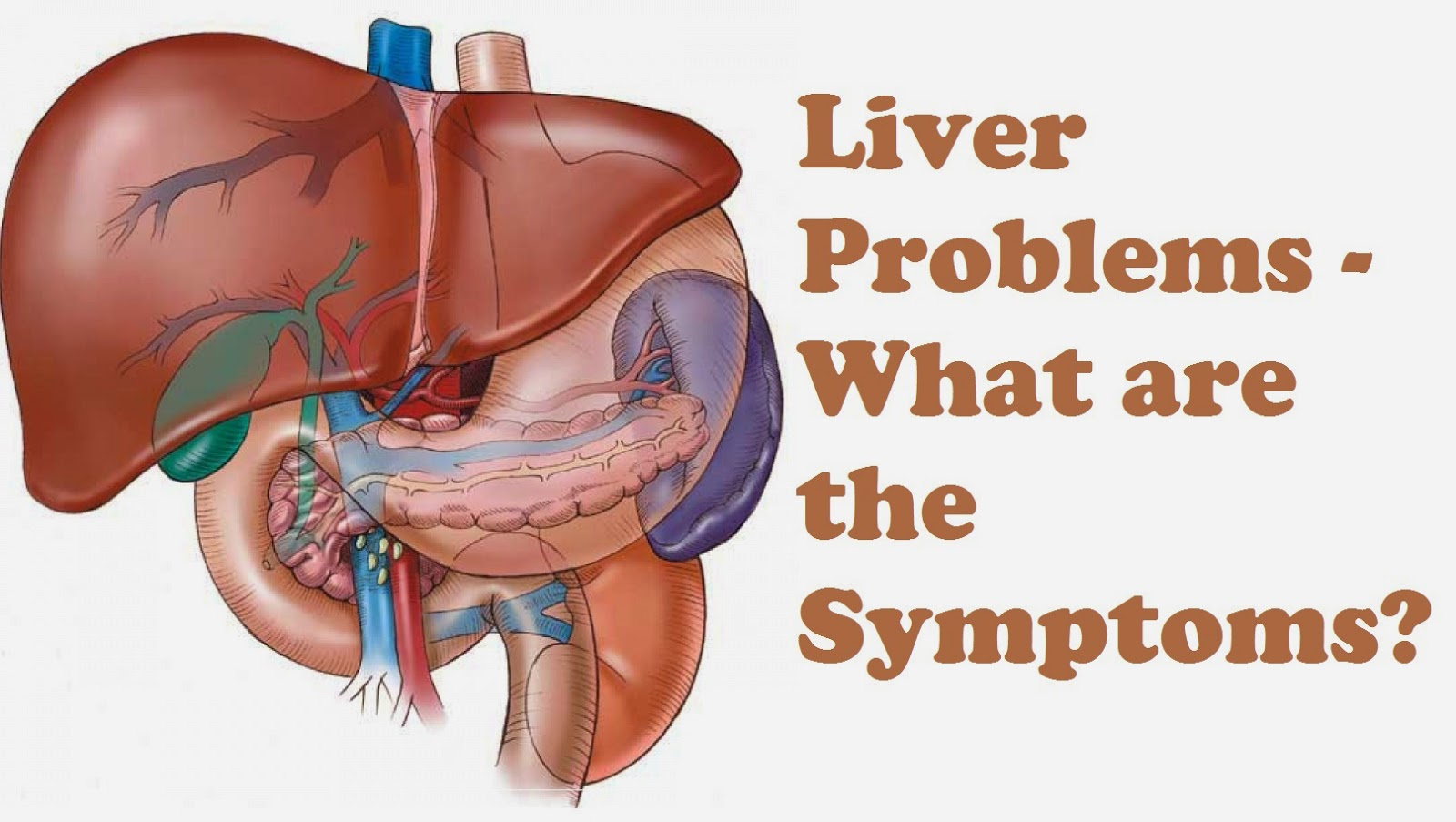 What Are The Symptoms Of Liver Gfntrt