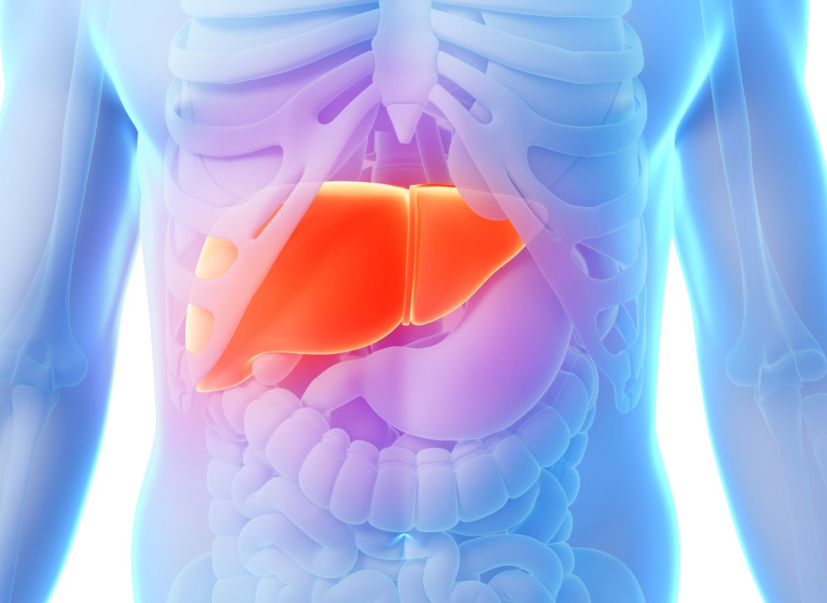 Liver Healthy Pictures Wallpapers