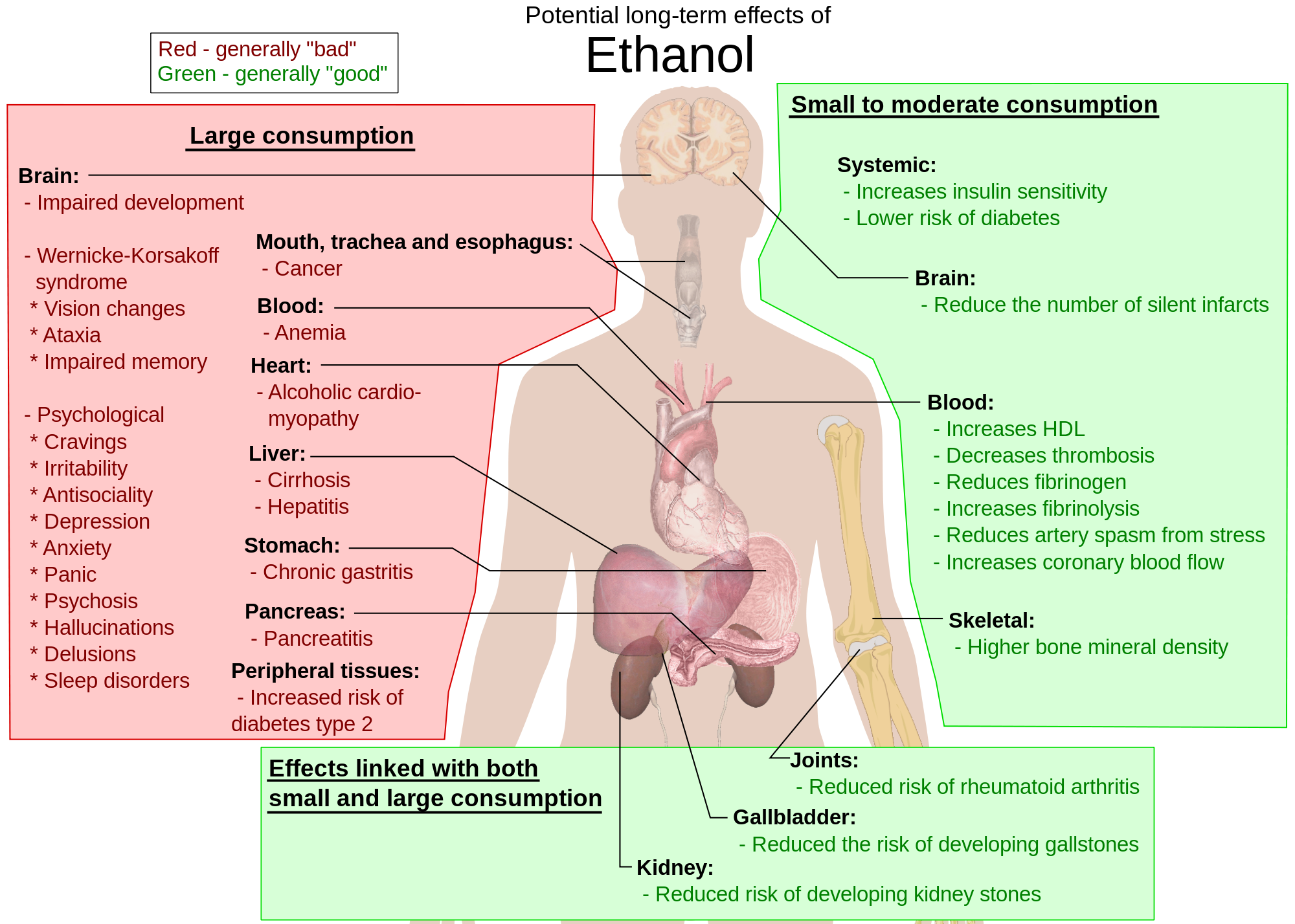 Symptoms Of Liver Disease In Men Wwnarzhme