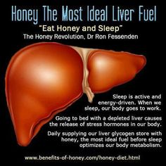 Where Is The Liver In The Body Healthy Liver And Cancer Pictures Wallpapers