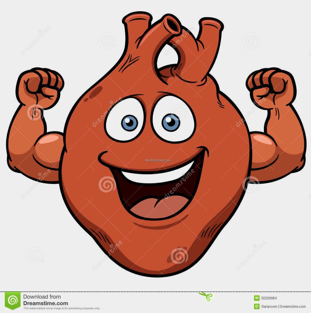 Human Heart Cartoon Pictures Wallpapers