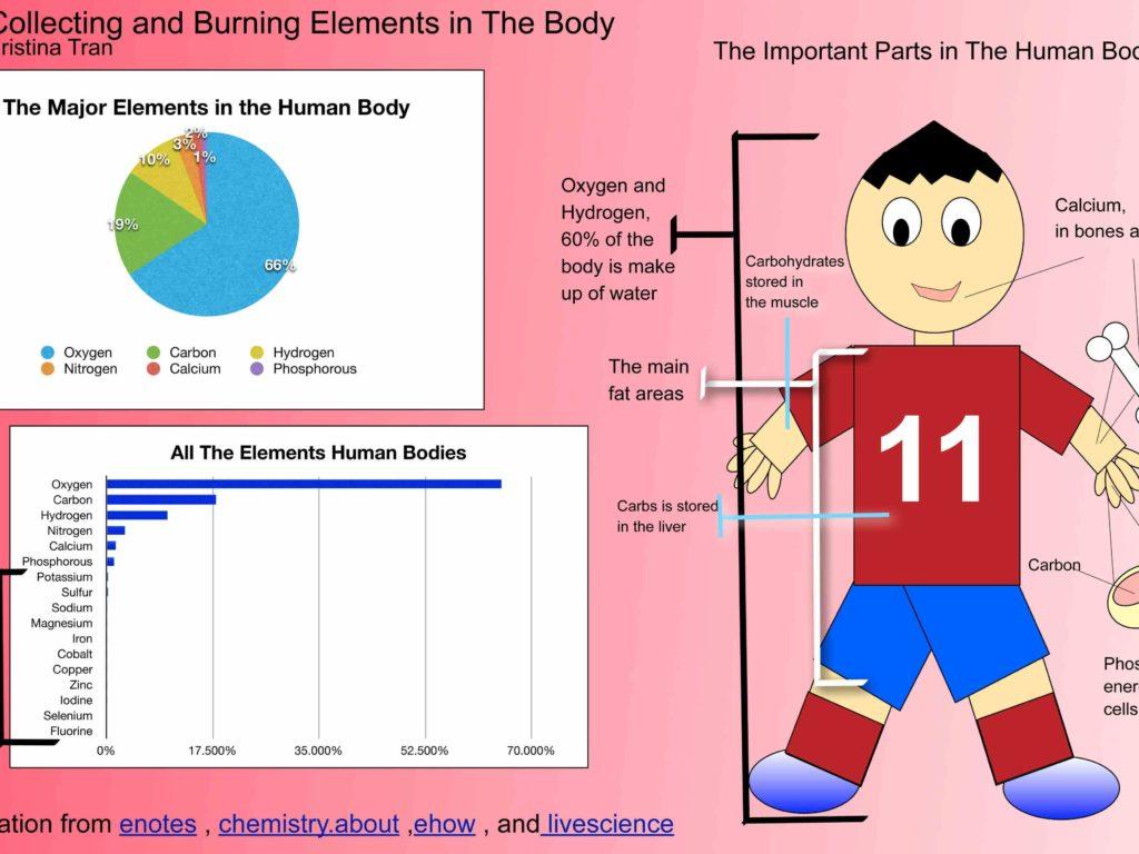chemistry in human body