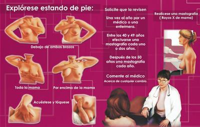 Como Detectar Cancer De Mama Pictures Wallpapers