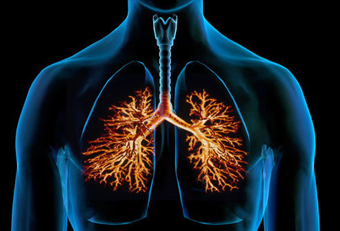 Webmd Lung Cancer Symptoms Pictures Wallpapers