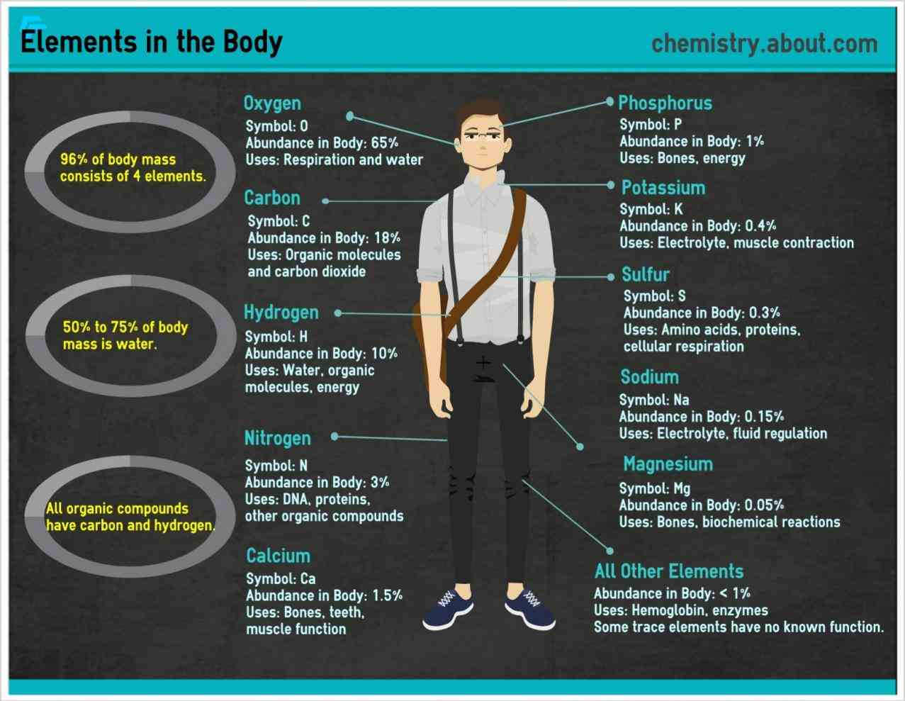 The Human Body elements are found in the human body there that occur naturally on earth for living things