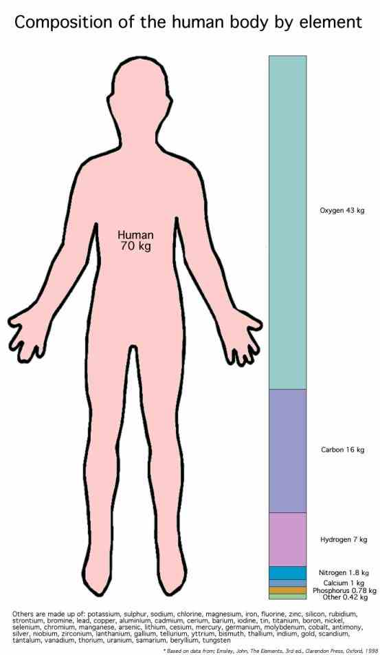 Elements Of The Human Body Pictures Wallpapers
