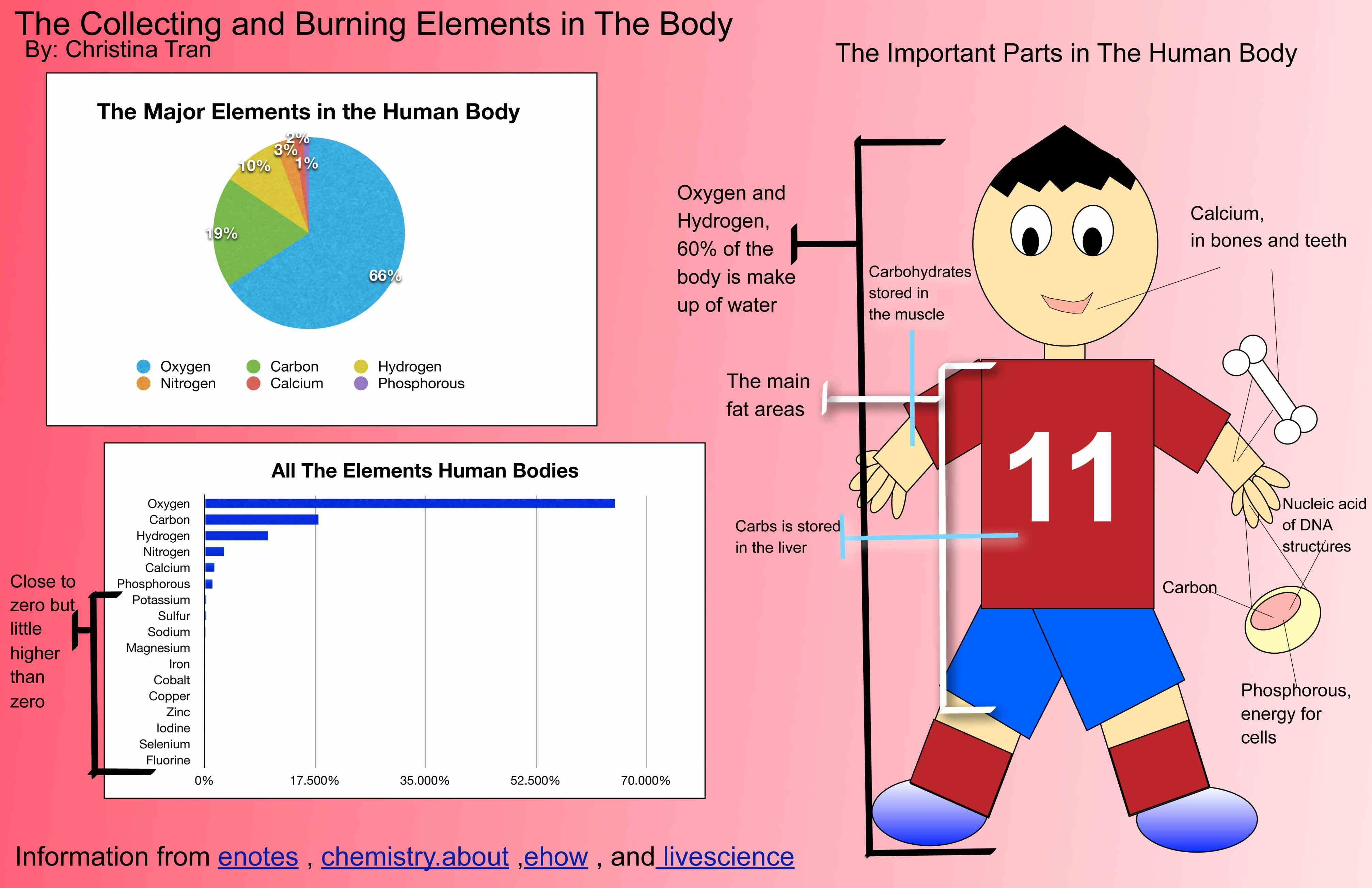 this is the chemical composition of average adult human body in terms elements and major compounds what Elements Of